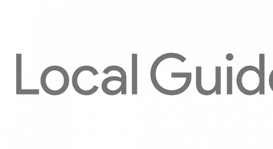 google local guides logo icon